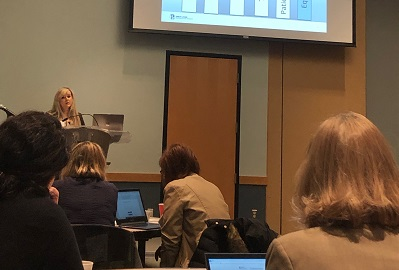The MHA Keystone Center's Ewa Panetta delivered a presentation during the GLPP HIIN regional learning session.